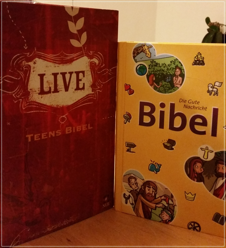 die bibel welche ausgabe ist die richtige f r mich tine s b cherwelt. Black Bedroom Furniture Sets. Home Design Ideas