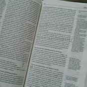 Nächsten am bibel welche dem urtext ist Welche Bibel